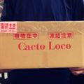 多肉植物のネットショッピング(通販)ならカクトロコがオススメ