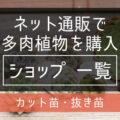 【多肉植物・カット苗.抜き苗】ネットで買える、生産者さん一覧