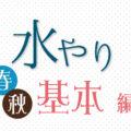 【基本編 / 春・秋】多肉植物の水やり方法
