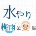 【梅雨&夏…編】多肉植物の水やり